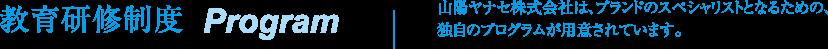 教育研修制度 Program 山陽ヤナセ株式会社は、ブランドのスペシャリストとなるための、独自のプログラムが用意されています。